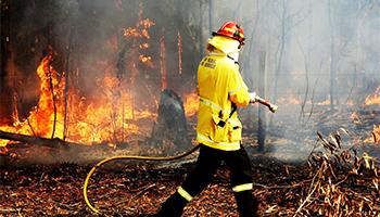 Bushfire 350x200.jpg