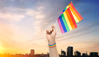 Rainbow flags, pride - 350x200.png